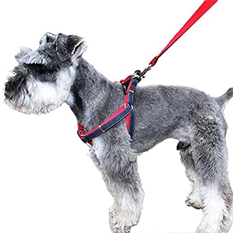 Pet Harnais, CUGLB Jean Chien conduit Non-Pull Leash Chien / Chat avec Quick Release Buckles sécurité Dog Harness Cowboy Strap Rope Chain