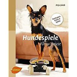 Hundespiele für zu Hause: Denksport, Tricks und Spiele