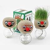 Mini DIY erba magica Vaso Head Doll desktop da ufficio in vaso