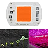 ILS - 5 pieces 50W 220V Full Spectrum LED COB Chip Grow Light for Plant