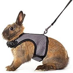 Qchengsan Harnais Doux avec Laisse pour Lapins et Lapins élastiques, Laisse de Promenade pour Animal Domestique avec Corde de Traction
