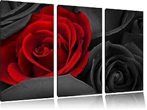 rose rosse romantico bianco nero 3 pezzi di tela 120x80 immagine / su tela, enorme XXL Immagini completamente incorniciata con barella, incorniciatura sulla foto parete con cornice, gänstiger come un quadro o un dipinto a olio, non un manifesto o un banner