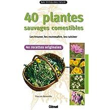 40 plantes sauvages comestibles