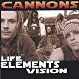 Life Elements Vision