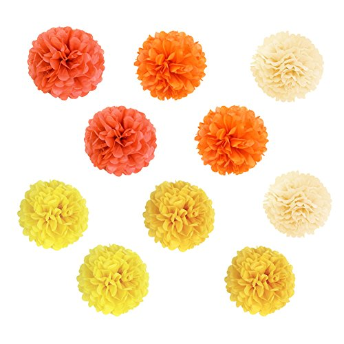 SUNBEAUTY 10er Set 20cm farbig Papier Blumen Pompoms Ball Party Geburtstag Feier Dekoration (Pom Orange Poms)