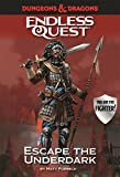 D&D Endless Quest: Escape the Underdark (Dungeons & Dragons Endless Que)