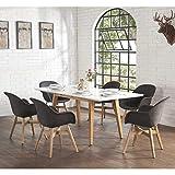 Pharao24 Design Essgruppe im skandinavischen Style dunkel Grau und Weiß