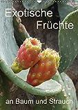 Exotische Früchte an Baum und Strauch (Wandkalender 2016 DIN A3 hoch): Tropisches Obst fotografiert wie es wächst an der Pflanze (Planer, 14 Seiten ) (CALVENDO Natur)