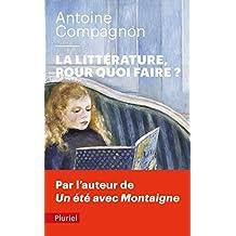 La littérature, pour quoi faire ?