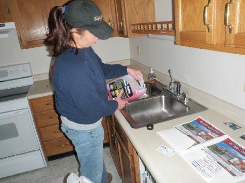 plantilla de plan de negocios para una ejecución hipotecaria limpieza servicio en español! por Kelly Lee