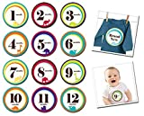 Sticky Bellies Baby Month Stickers - Wil...