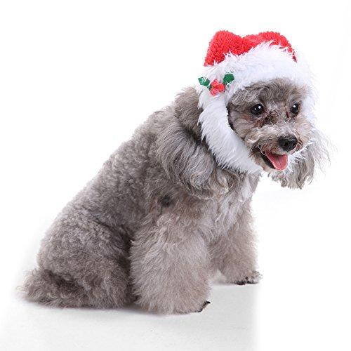 Huhuswwbin Pet Dog/Cat Baseball Hat/cap/Sport/Cappello di Estate/Visiera (Vizor) cap Lovely Pet Puppy Gatto Cappello di Natale con Babbo Natale Barba cap Dog Dress-up Costume–L SDZ32Barba