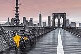 Empireposter - Frank, Assaf - Brooklyn