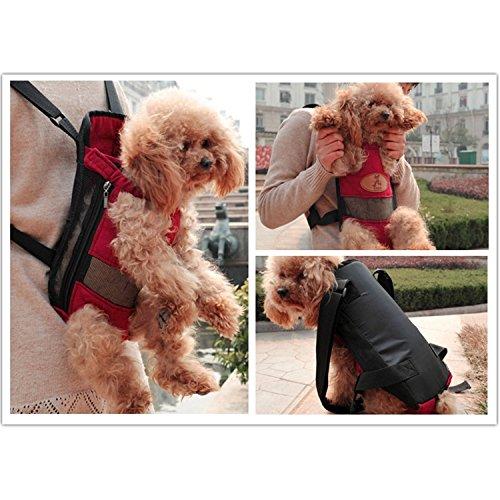Borsa marsupio per cani taglia m rosso for Marsupio per cani di piccola taglia