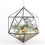 Blumentopf zum Aufhängen, Y & M (TM) Moderner Ikosaeder Offene Glas Geometrische Terrarium Blumentopf des frischen Farn Übertopf Micro Amt Landschaft Triangle