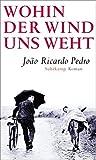 Wohin der Wind uns weht: Roman von João Ricardo Pedro