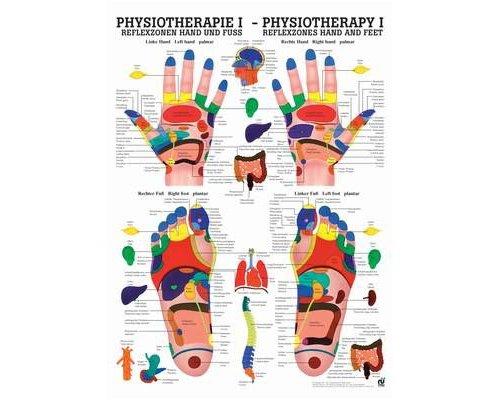 Fisioterapia-Poster Riflessologia mano e piede (tedesco/inglese), 50x 70cm