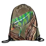 Backpacks Could Be A Travel Backpack,outdoor Backpacks,hunting Backpack,camping Backpack,hiking Backpack For Girls And Boys,for Women And Men When Go Out.it's A Nice Light Traveling Backpack For Storage Simple Clothes And Other Stuffs.Also Could Be A...