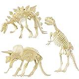 TOYMYTOY Figurile Squelette Figure Modèle Jouet Assorties Dinosaure Fossile...