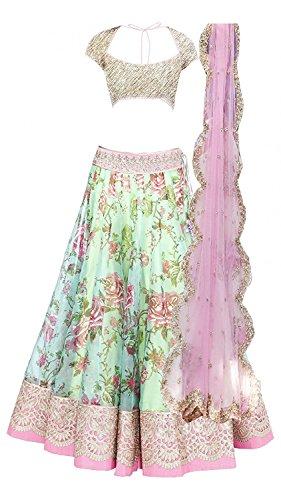 Dipak Fashion Fancy Net Pink Colour Lehenga Choli
