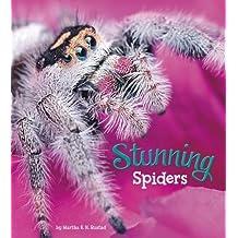 Stunning Spiders (A+ Books: Marvellous Minibeasts!)