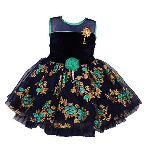 Wish Karo Baby Girls Party Wear Frock Dress DN fe2177g-0-3 Mths