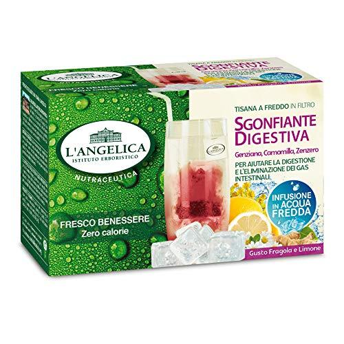 L\'Angelica Tisana a Freddo Sgonfiante Digestiva - 15 Filtri [50 gr]