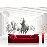 Fototapete 368x254 cm PREMIUM Wand Foto Tapete Wand Bild Papiertapete - Tiere Tapete Pferde Tiere Fell Säulen Kugeln Schatten weiß - no. 2408