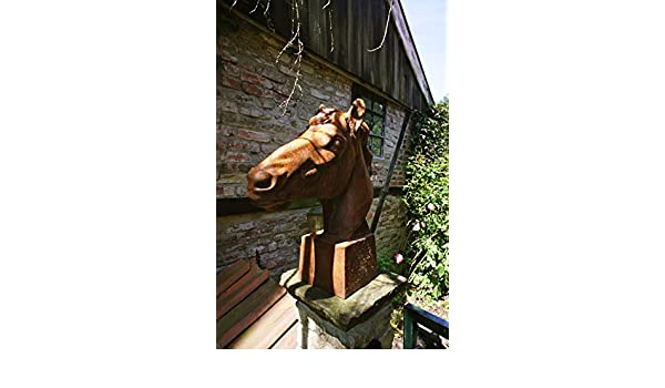eindrucksvoll Lebensgröße Mauerkrone Pferd Rostoptik Skulptur Pferdekopf
