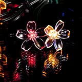 50 Multicolour LED Flower Blossom Solar Powered Fairy Lights  Waterproof Solar Decoration String Lights with Builtin Night Sensor  for Christmas, Outdoor, Garden, Fence, Patio, Yard, Walkway, Driveway, Shed, Garage, Path, Ornament, Stairs and Outsi...