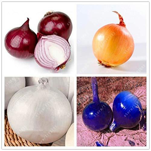 HATCHMATIC 1: 20 Pcs/Sac Okra santé Graines de légumes Aliments Non OGM Organique pour Le Rein de Jardin S