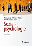 Sozialpsychologie (Springer-Lehrbuch)