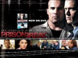 Prison Break (TV) 11x17 Inch (28 x 44 cm) Movie Poster
