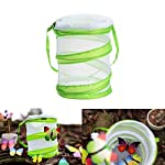 sgerste 14 x 15cm/30 x 35cm praying mantis/stick insect/butterfly/cylinder style pop up cage green - 14x15cm SGerste 14 x 15cm/30 x 35cm Praying mantis/Stick Insect/butterfly/Cylinder Style Pop Up Cage Green – 14x15cm 51rvaI EhFL