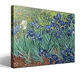 Cuadro Canvas Iris de Vincent Willem Van Gogh
