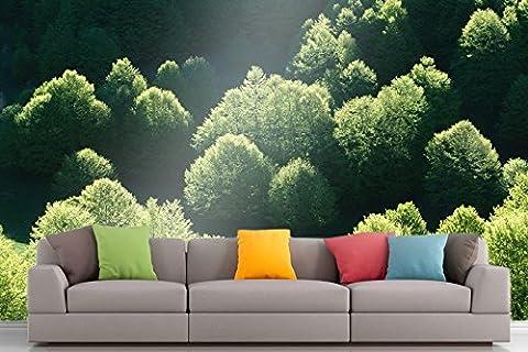 Roshni Arts®–curated Art Mural en vinyle autocollant–Série Nature–1310  Ameublement Décor Art Mural–121,9x 162,6cm