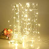 Timewanderer Warm White String Starry Fairy AA Battery Operated 3M/10Ft 30 Bright Micro LED Ultra Thin Decorative Lights Silver Wire for DIY
