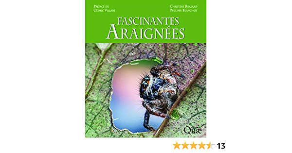 Amazon Fr Fascinantes Araignees Preface De Cedric Villani Rollard Christine Blanchot Philippe Livres