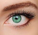 ELFENWALD farbige Kontaktlinsen, 3 - Monatslinsen, INTENSE VERDE/TIEFGRÜN, stark deckend, natürlicher Look, maximaler Tragekomfort, ohne Stärke, 1 Paar weiche Farblinsen, inkl. Behälter und Anleitung