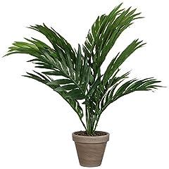Idea Regalo - MICA Decorations 930311 - Vaso con palma, colore verde