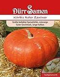 Kürbissamen - Kürbis Roter Zentner von Dürr-Samen