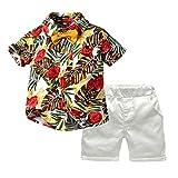 Balishion Vestiti Set Bambino Manica Corta Cardigan della Camicia Tinta Unita Pantaloncini Completo da Uomo Neonato Vestiti Bambina Pantaloni Pantaloncini per Bambini T-Shirt Pantaloncini Set