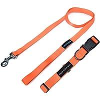 Heads Up For Tails Essentials Nylon Dog Leash & Collar (Small, Orange)