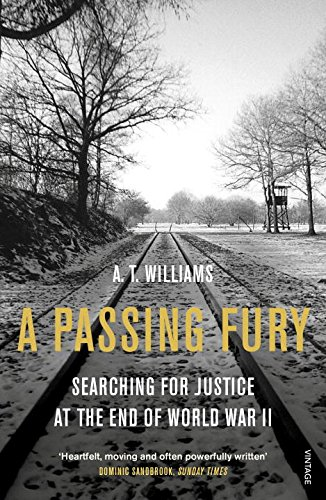 a-passing-fury-searching-for-justice-at-the-end-of-world-war-ii