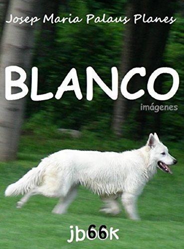 Blanco (imágenes) (Spanish Edition)