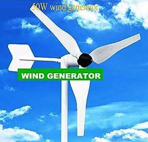 Gowe 50W Build en moto DC 12V ou 24V Sortie Little Vent Générateur Jeux facile à déplacer moins de 3kg Design Good Turbine à vent