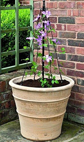 gardman-mini-maypole-plant-support