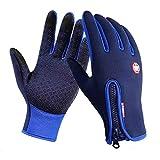 Targogo Full Finger Handschuhe Touchscreen Männer Drei Finger Winddicht Winter Warm Smartphone Handschuhe Für Outdoor Sport Wandern Radfahren (Color : Blau, Size : L)