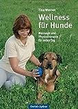 Wellness für Hunde: Massage und Physiotherapie für jeden Tag