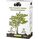 Concime granulare per Piante Verdi - Cifo (lenta cessione 4 mesi) [1 kg]